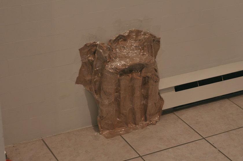 cast radiator (2010)
